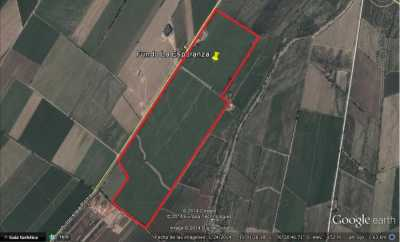 Property listed For Sale in Imperial, Peru