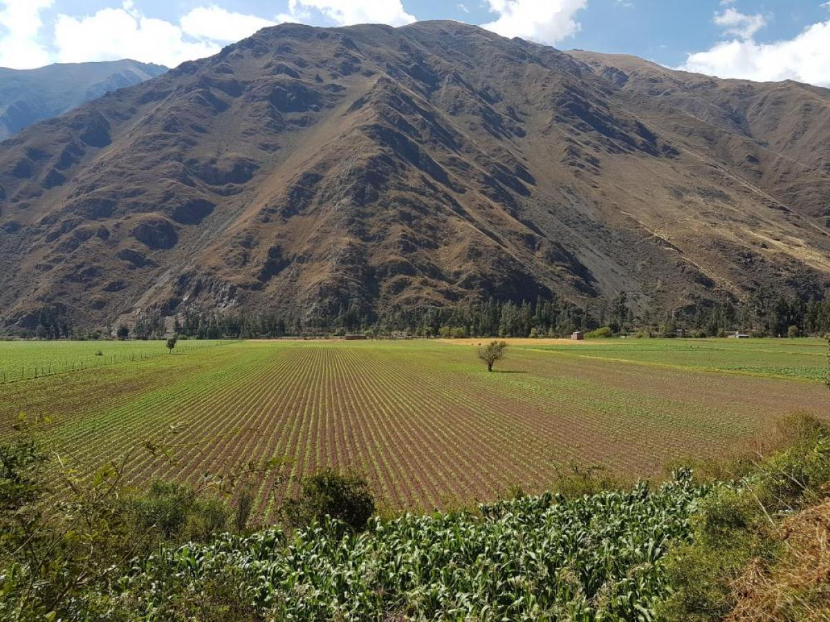 Property listed For Sale in Cusco, Peru