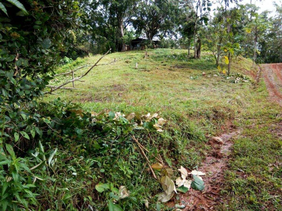 Property listed For Sale in Dominical, Costa Rica