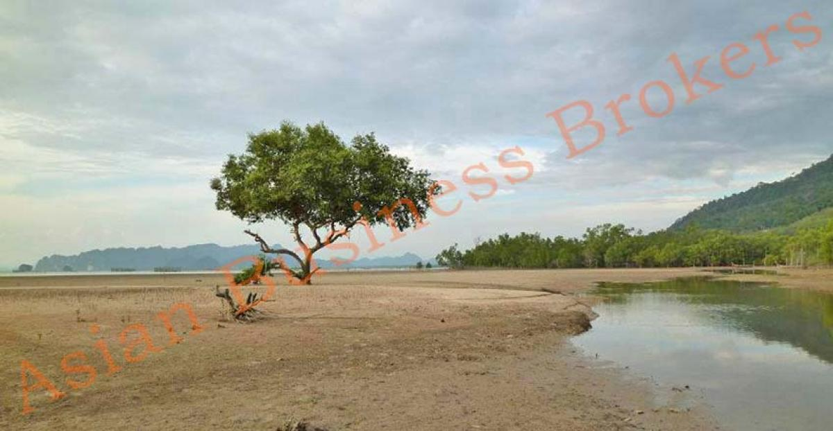 Property listed For Rent in Krabi, Thailand