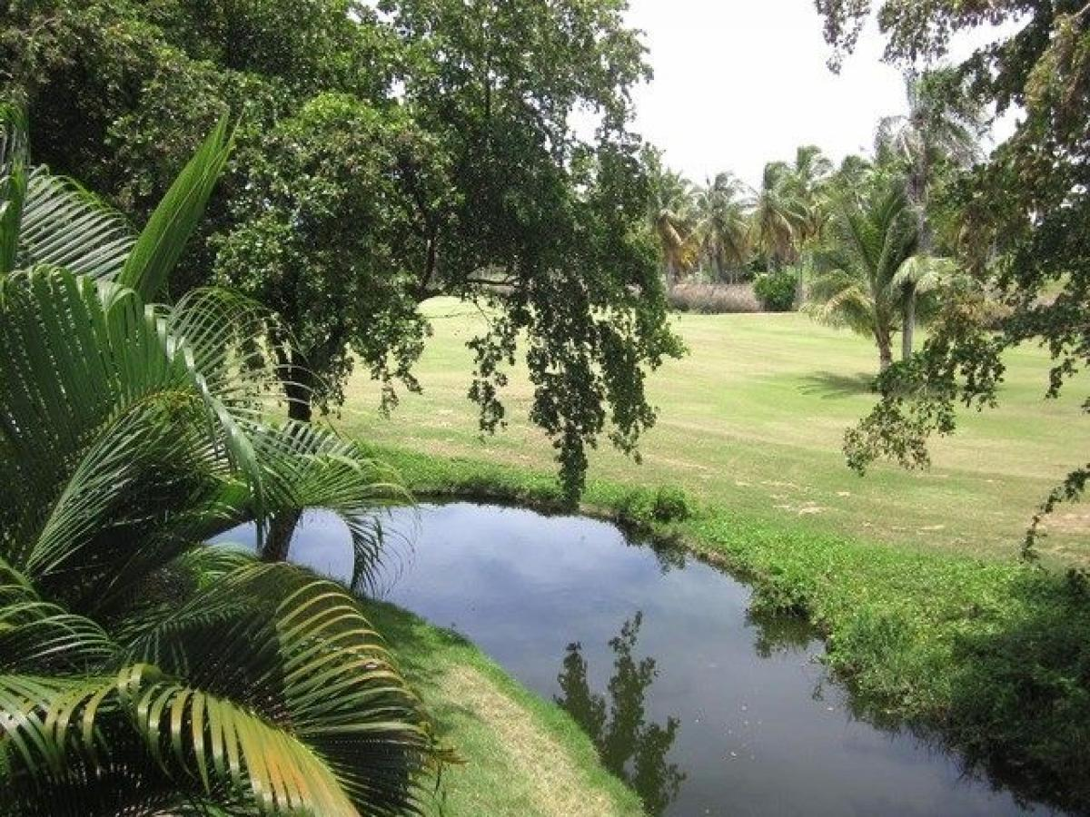 Property listed For Sale in Bavaro, Dominican Republic