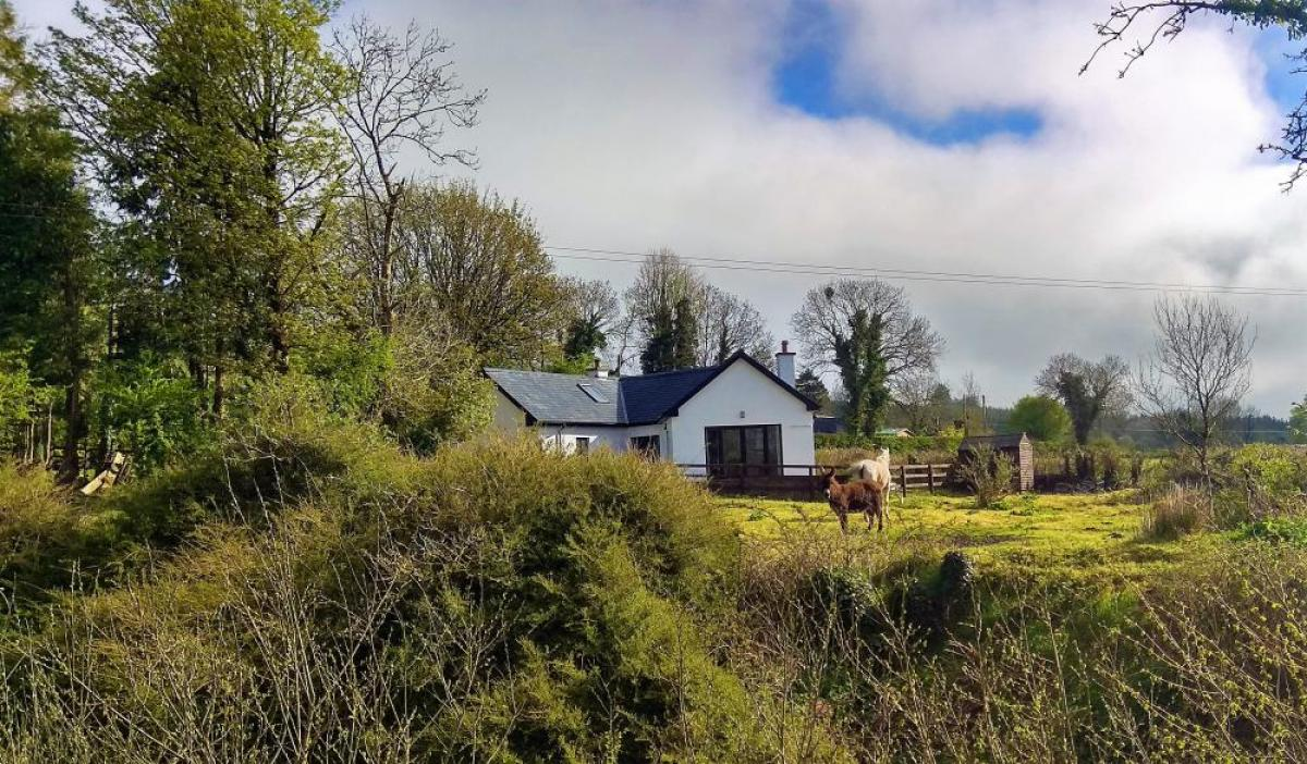 Picture of Bungalow For Sale in Templemore, Tipperary, Ireland