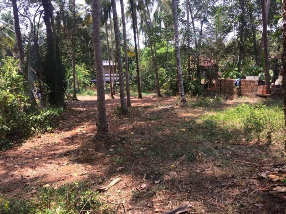 Property listed For Sale in Kozhikode, India