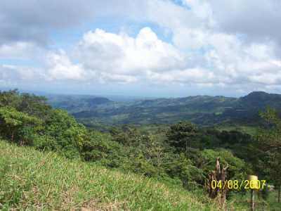 Commercial Land For Sale in