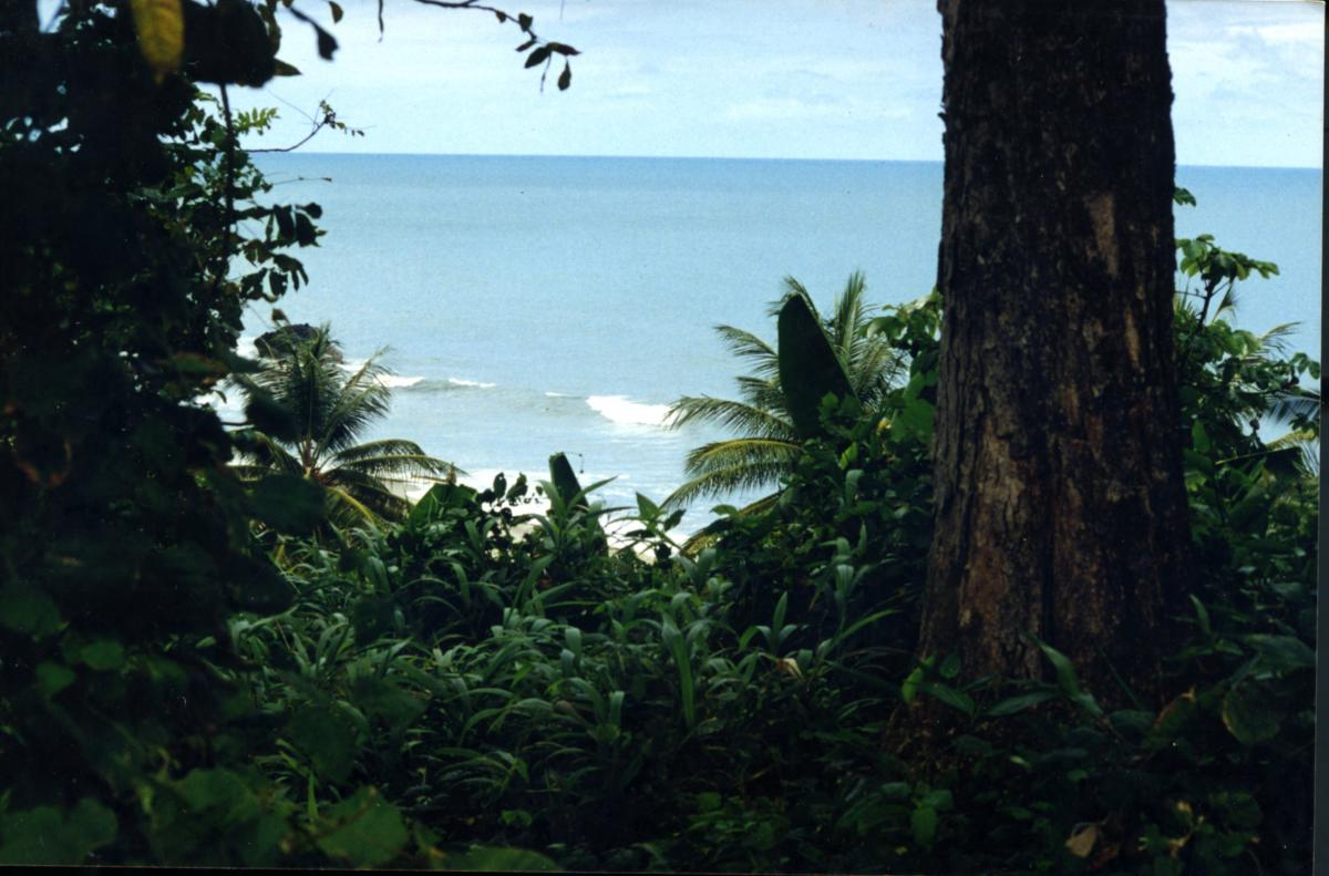 Picture of Home For Sale in Toco, Sangre Grande, Trinidad and Tobago