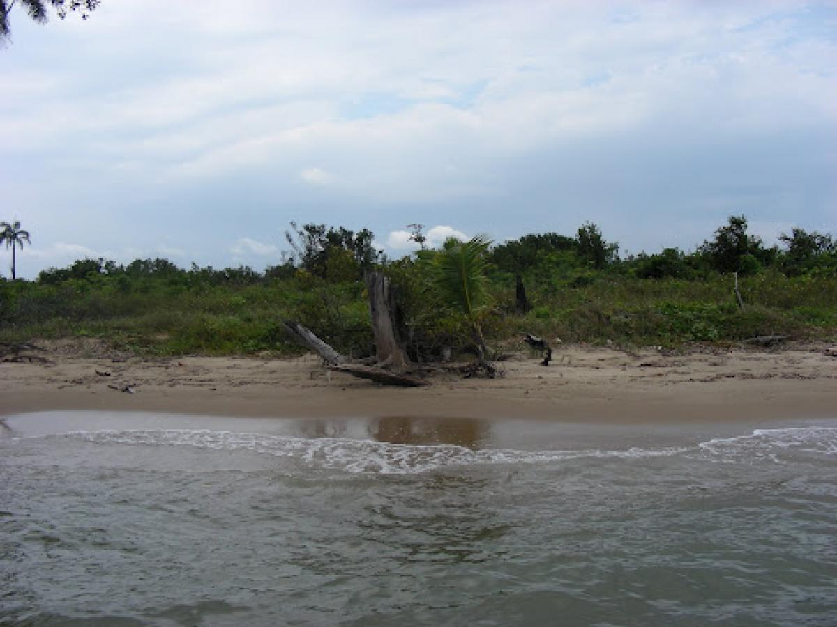 Picture of Residential Land For Sale in Punta Negra, Toledo, Belize
