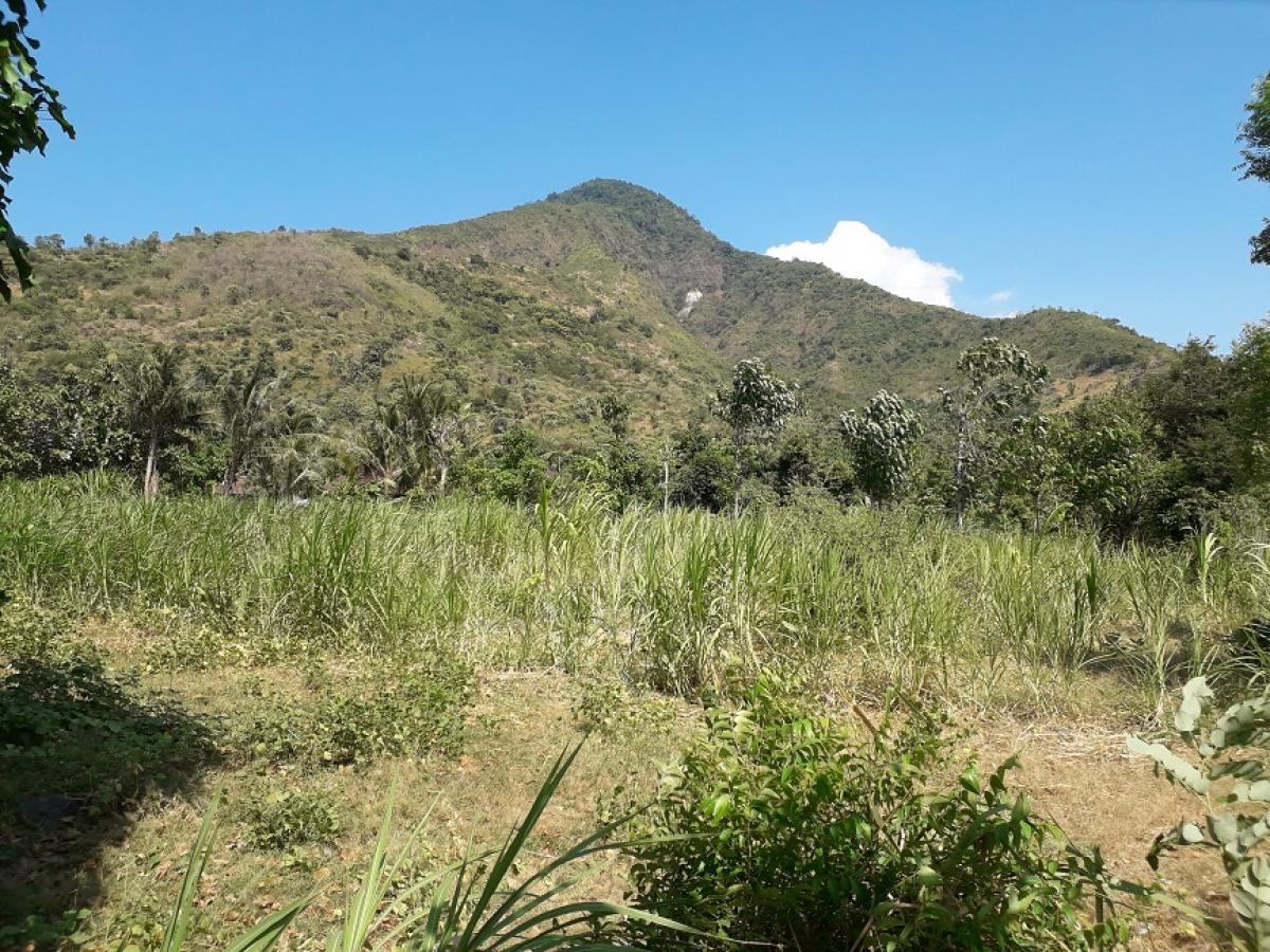 Picture of Land For Sale in Buleleng, Bali, Indonesia