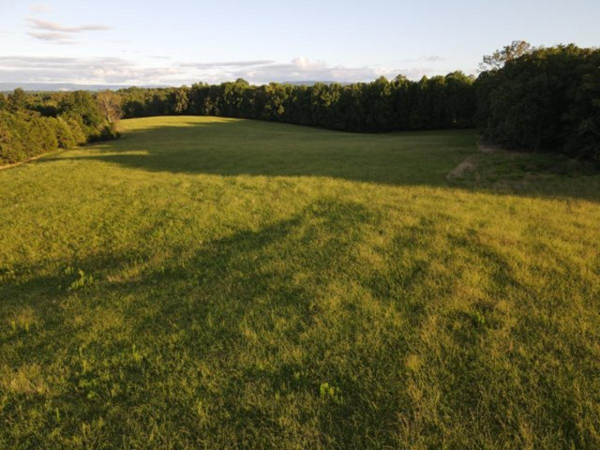 Picture of Mixed-Use Land For Sale in Mc Minnville, Tennessee, United States