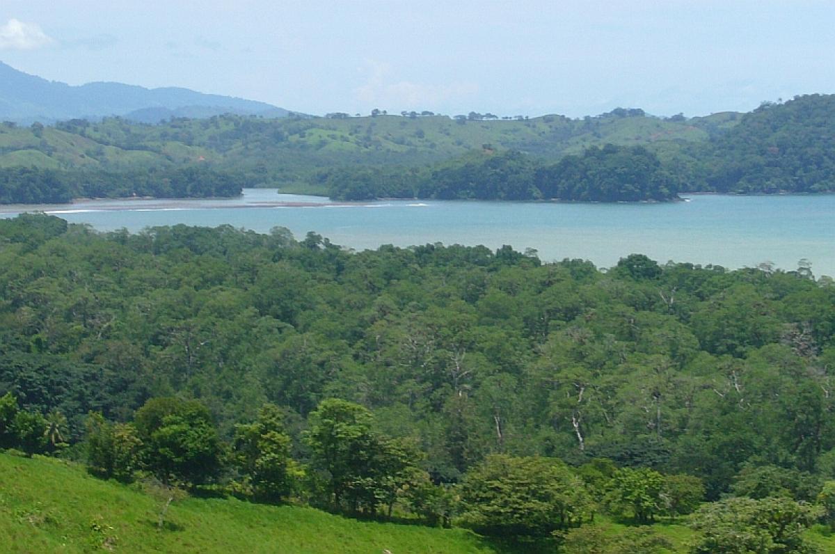 Picture of Vacation Home For Sale in Almirante, Bocas del Toro, Panama